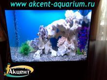 Акцент-аквариум, аквариум 250л псевдо-море, кенийский камень