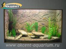 Акцент-аквариум, аквариум 800л задний фон, песчаник африканские цихлиды