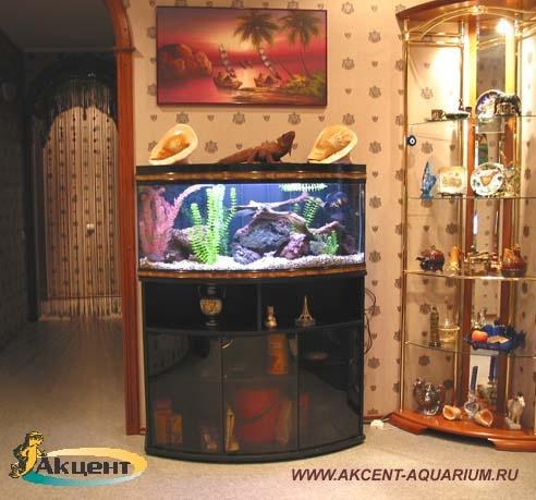 Акцент-аквариум,аквариум 200 литров с гнутым передним стеклом
