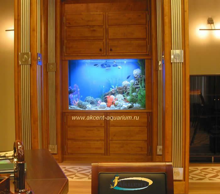 Акцент-аквариум,аквариум 900 литров встроенный в стену