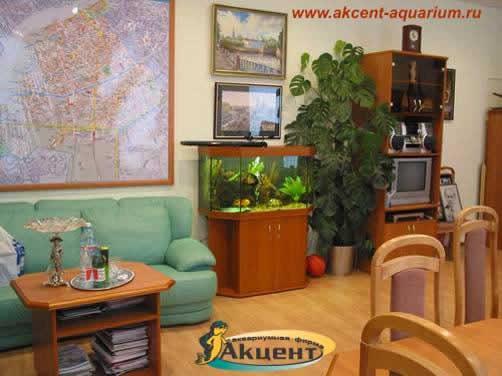 Акцент-аквариум,аквариум 300 литров панорамный