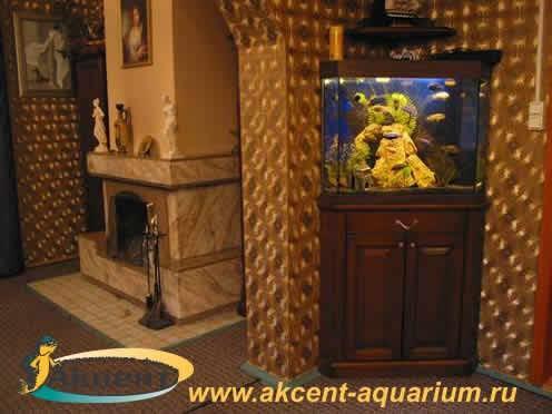 Акцент-аквариум,аквариум 120 литров угловой