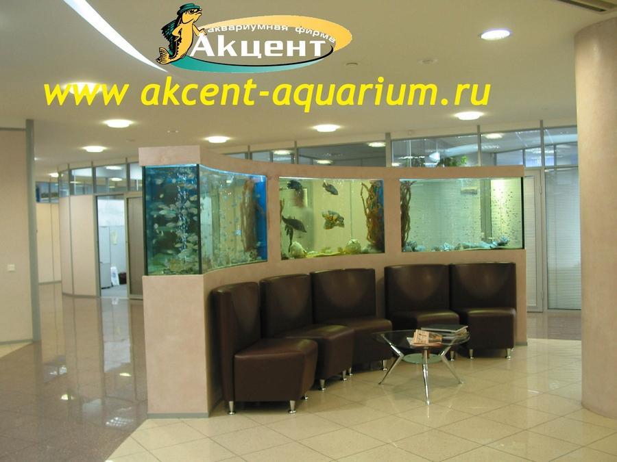 Акцент-Аквариум, 3 аквариума сложной формы
