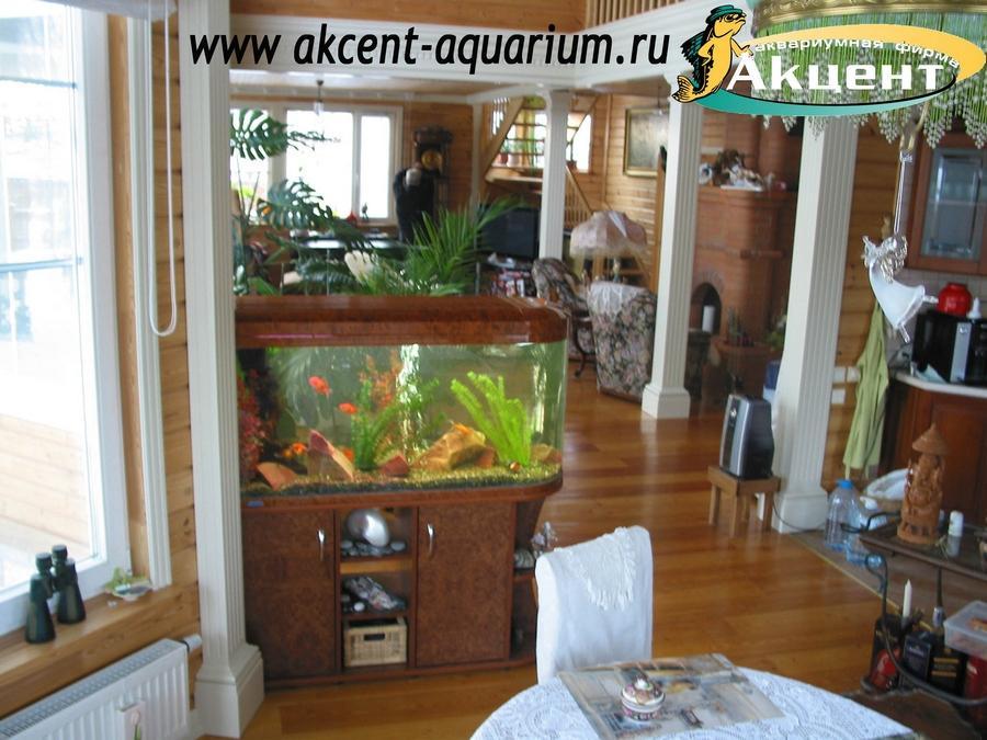 Акцент-Аквариум, аквариум просмотровый JEBO