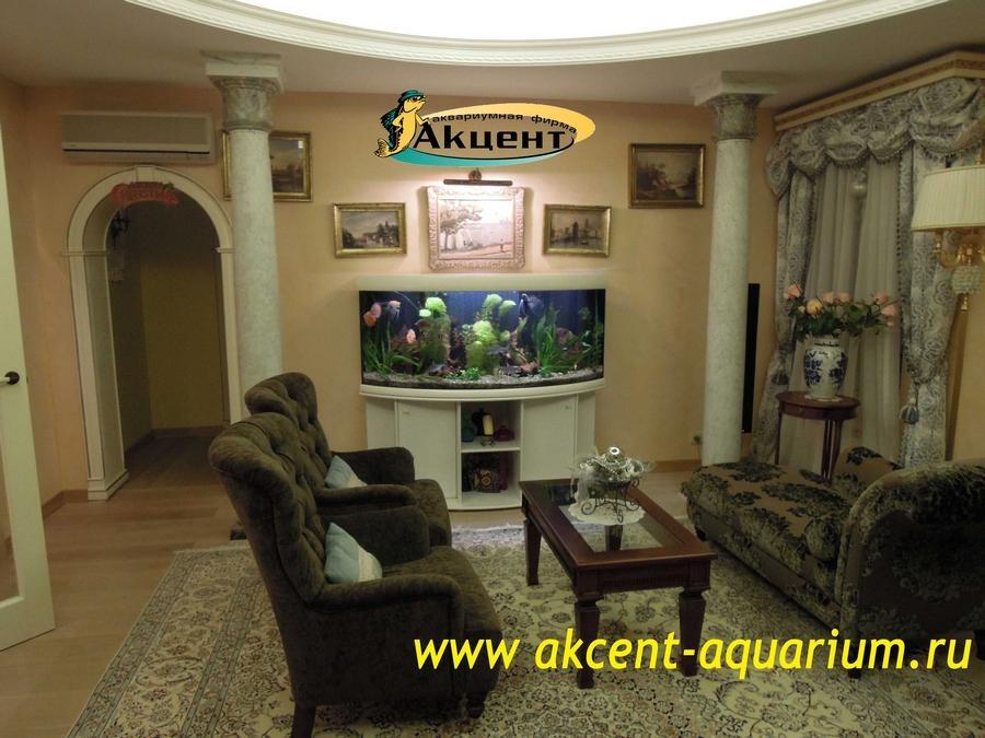 Акцент-Аквариум, аквариум 350 литров с гнутым передним стеклом