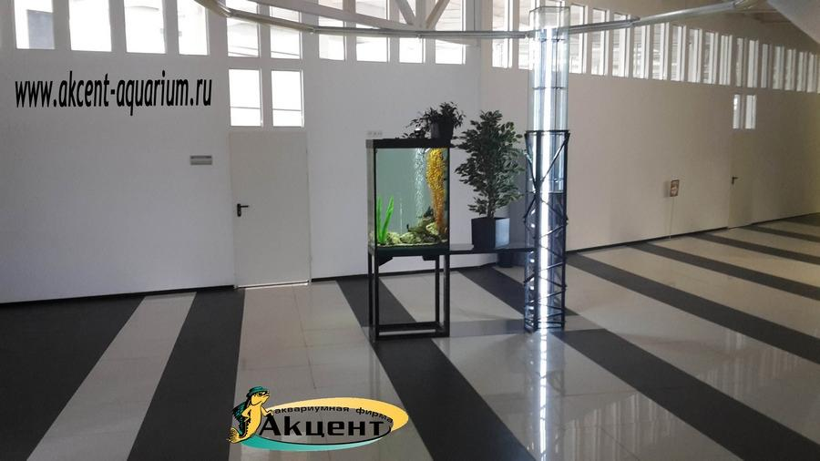 Акцент-аквариум, аквариум 300 литров просмотровый со всех сторон