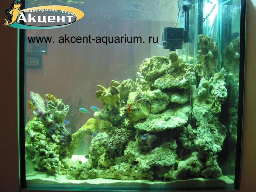 Акцент-аквариум, морской аквариум 400 литров, живые камни, кораллы