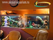 Акцент-аквариум. Террариумы с древесной змеёй и игуаной