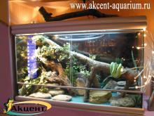 Акцент-аквариум. Террариум с древесной змеёй